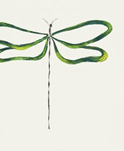 Dragonfly wallpaper, part of the Melinki Collection by Scion - Emeral, Lime, Onyx and Chalk