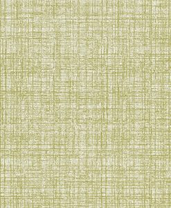 Khadi wallpaper by Scion in Moss
