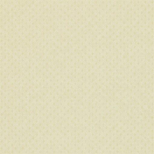 Plain wallpaper by Zophany in Pale Green