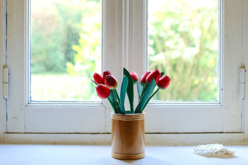 Flowers in front of a window