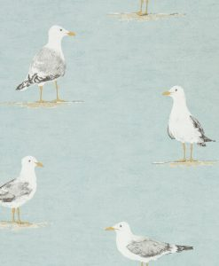 Shore Birds in Sky