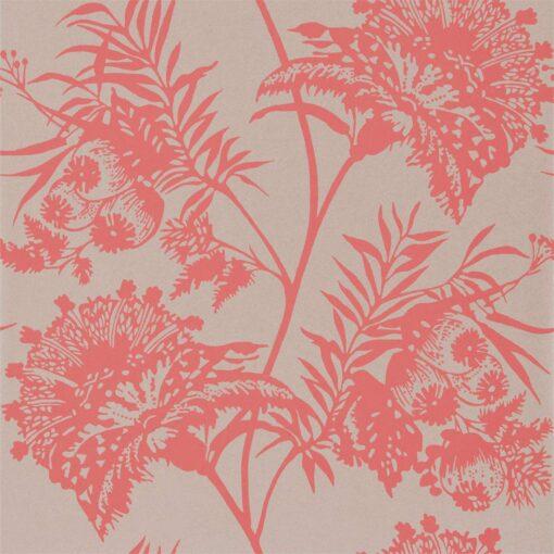 Bavero wallpaper in Coral