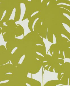 rizona Palm Tree Wallpaper in Kiwi