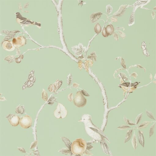 Fruit Aviary wallpaper from the Art of the Garden Collection by Sanderson Home in Sage & Neutral
