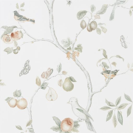 Fruit Aviary wallpaper from the Art of the Garden Collection by Sanderson Home in Ivory and Mineral