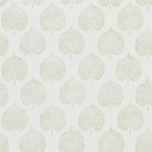 Lyme Leaf wallpaper from The Potting Room Collection in Celadon