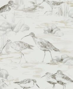 Estuary Birds from the Embleton Bay Collection in Chalk and Sepia