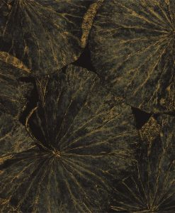 Taisho Lotus Wallpaper from The Must Collection by Zophany in Vine Black