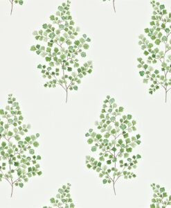 Angel Ferns wallpaper from the Maycott Collection