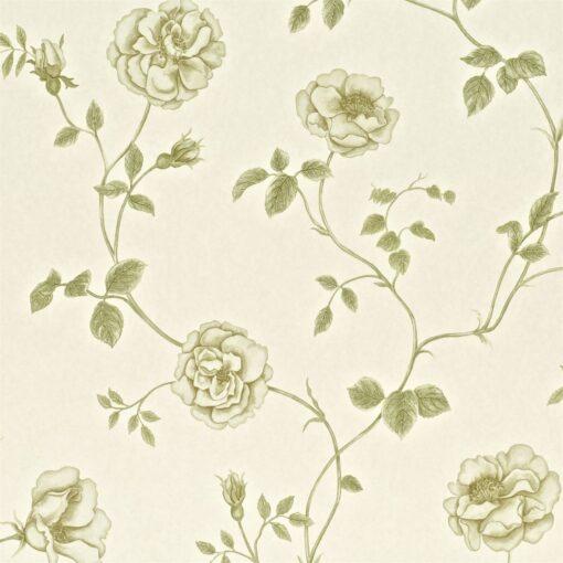 Rosalie wallpaper